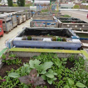 Urban Gardening auf dem Züblin Parkhaus.
