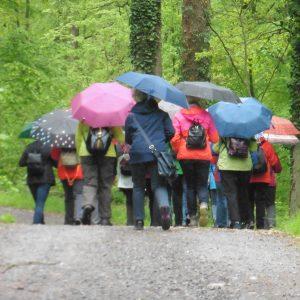 Wanderung Beginn an der Haltestelle Waldeck