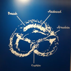 Anatomie der Brezel